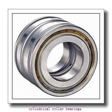 45 mm x 100 mm x 25 mm  FAG NUP309-E-TVP2  Cylindrical Roller Bearings
