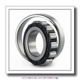 7.48 Inch   190 Millimeter x 10.236 Inch   260 Millimeter x 1.654 Inch   42 Millimeter  CONSOLIDATED BEARING NCF-2938V  Cylindrical Roller Bearings